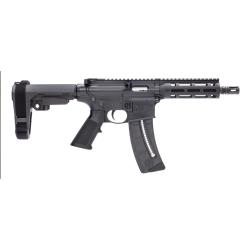 Smith & Wesson Semi-Auto 22 Rifle